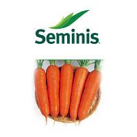 Морковь Виктория (Viktoria) 500 грамм Seminis