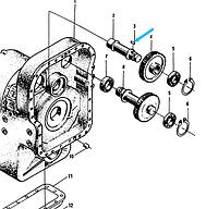 Шпонка 14х36 (Привод насоса управления поворотом) GB1096-79