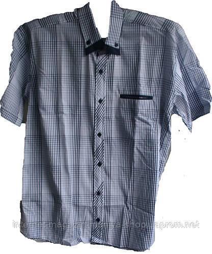 Мужская рубашка Турция  полубатал