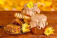 Мёд подсолнечный 1л