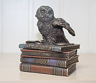 Оригинальная шкатулка Veronese Сова на книгах VR511