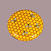 Крышка медовая соты твист 66 мм (упаковка 1250 шт)