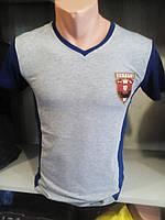Мужская серая приталенная футболка