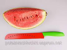 Нож для арбуза и дыни 17,5 см.