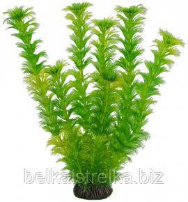 Аквариумное растение Aquatic Plants 2576, 25 см.