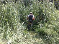 Покос травы Покос камыша Покос бурьяна