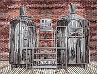 Мини пивоварня 500л