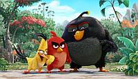 Angry Birds 2 Вафельная картинка