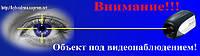 "Табличка ""Объект под видеонаблюдением"" St 202 blue"