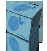 Фильтр топливный BLUE PRINT