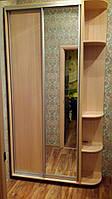 Шкаф-Купе с Зеркалом и ДСП