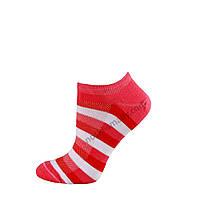 Носки женские летние укороченные , фото 1