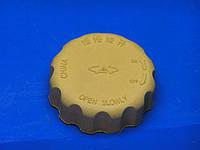 Крышка расширительного бачка Chery S11 QQ (Чери КУ-КУ), S11-1311120