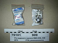 Р/к водяного насоса ЯМЗ-236, 238  (Руслан-Комплект)