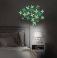 Люминесцентная краска Noxton для интерьера и декора