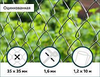 Сетка Рабица оцинкованная  35х35/1,6мм 1,2м/10м