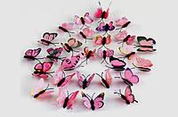 Бабочки 3D цветные (лиловые) 3Д декор наклейки магнит