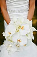 Свадебный набор | Белый цвет, орхидеи.