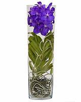 Орхидея Ванда в стеклянной вазе, фиолетового цвета (70см.)