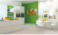 Плитка для ванной и кухни Fresh Fruits Opocno, фото 1