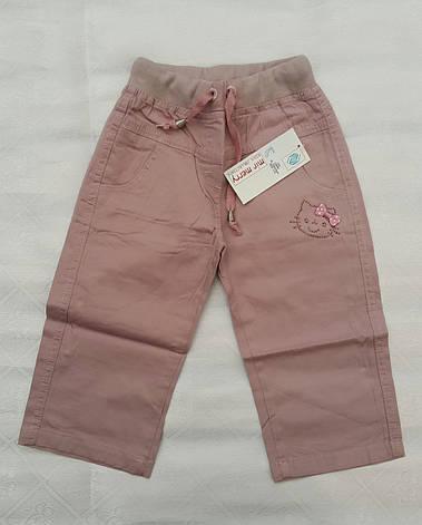 Бриджи-шорты для девочек  Hello Kitty , фото 2