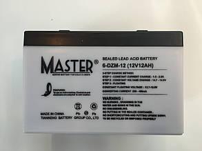 Аккумуляторы к электровелосипедам MASTER 6-DZM-12 , фото 2