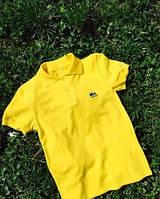 Модная мужская футболка.
