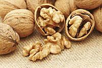 Бизнес-план для сада грецкого ореха