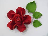 """Роза """"Королевская"""" (разные цвета)"""