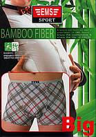 Мужские трусы боксеры батал бамбук EMS Sport Bamboo 397