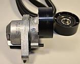 Комплект генератора + ролик + натяжитель (+АС) на Renault Kangoo 1997->2008 1.4, 1.6i 16V  —  7701477517 , фото 4