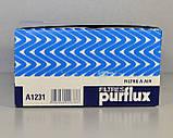 Фильтр воздуха на Renault Kangoo II 2008->1.6i 16V — Purflux (Франция)  - PX A1231, фото 5