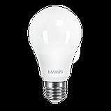LED лампа Maxus A60 10W 3000K (950Lm) 220V E27. 1-LED-561-P, фото 2