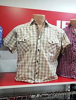 Рубашка мужская короткий рукав клетка беж 2кармана