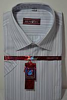Мужская рубашка c коротким рукавом BENDU