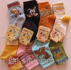 Детские носки деми р.12-22