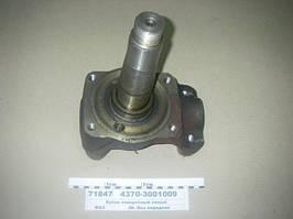 Кулак поворотный левый (пр-во МАЗ)