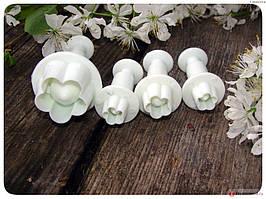 Комплект плунжерів для мастики CHI Яблонев колір із 4 шт.