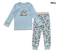 Пижама Пингвинчики для девочки. 6 лет