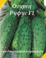 Семена на вес Огурец Руфус F1