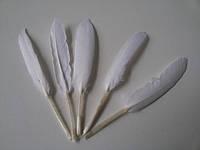 Перо декоративное Белое