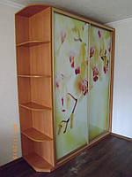 Шкаф-Купе «Орхидеи»