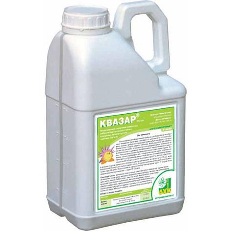 Гербицид Квазар (Ачиба), хизалофоп-П-этил 50 г/л, соя, сахарная свекла, рапс озимый и ярый, подсолнечник , фото 2