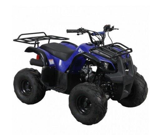 Квадроцикл ДТЗ sp110-3