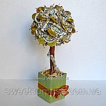 """Топиарий """"Дерево из денежных купюр"""", фото 2"""