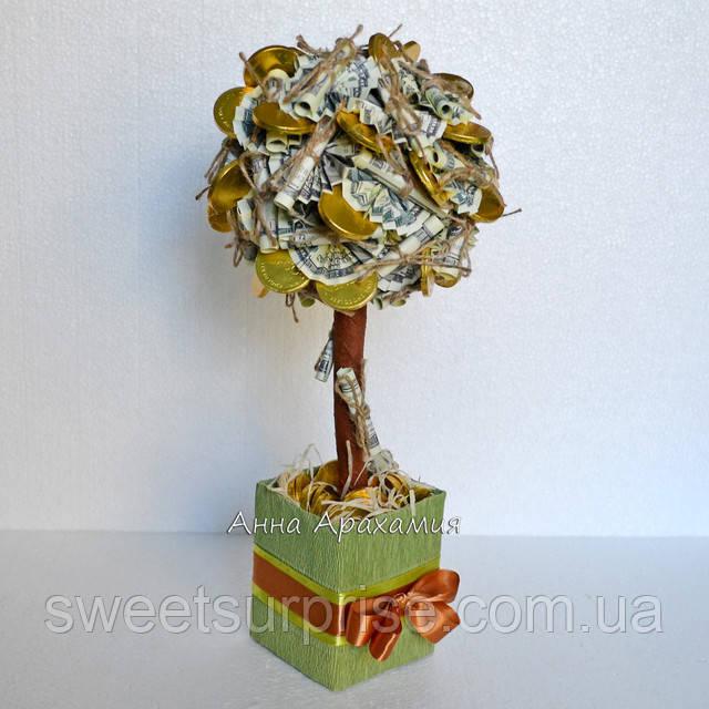 Как вырастить денежное дерево уход за растением