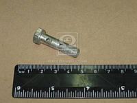 Болт штуцера М8х1 L=31 мм (ММЗ). 240-1104787-Б