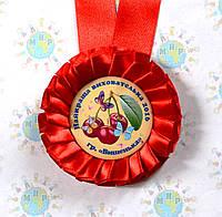 Медаль Воспитателю группы Вишенки