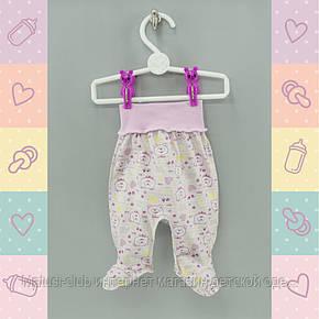 Ползунки для новорожденных девочек, в роддом. Хлопок-Кулир  1102роз, в наличии 44,50_56_62,68 Рост, фото 2
