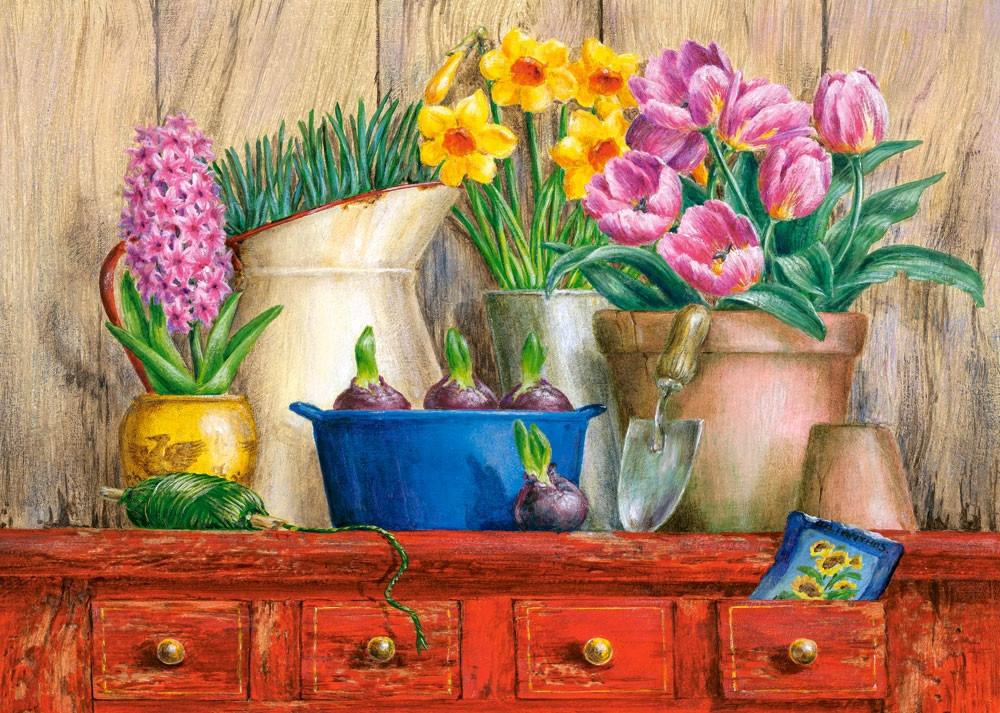 Пазлы Castorland Ранние цветы 51809, 500 элементов